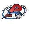 FC Rennsteig Avalanche