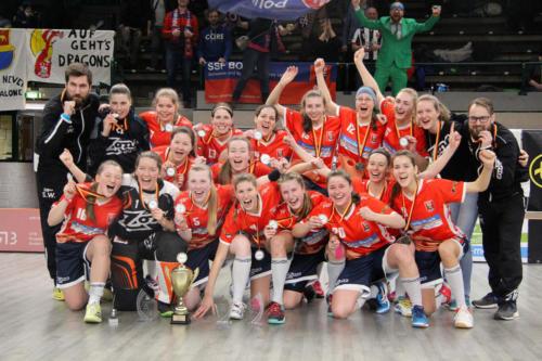Deutscher Vizepokalsieger 2018